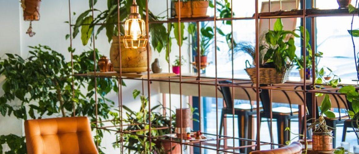 smart garden-hanging-plants